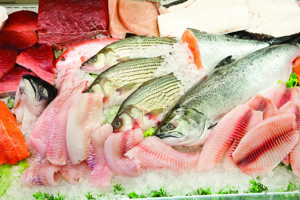 Seafood, Anchovies, Sardines