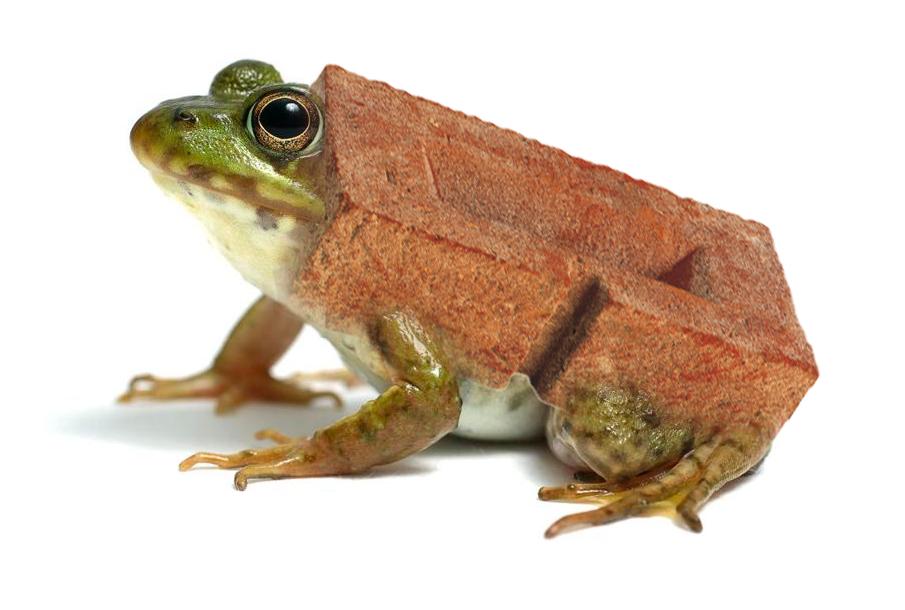 frog brick.png