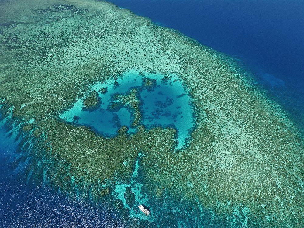 Drone shot at Briggs Reef
