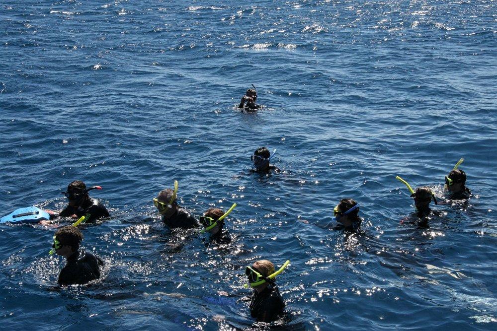 Snorkelers at Moore Reef