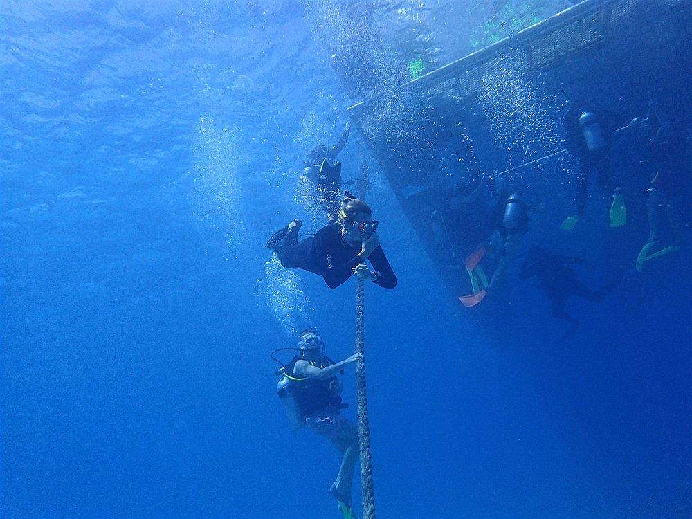 dive and snorkel.jpg