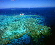 reef from air.jpg