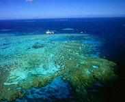 reef from air.jpg
