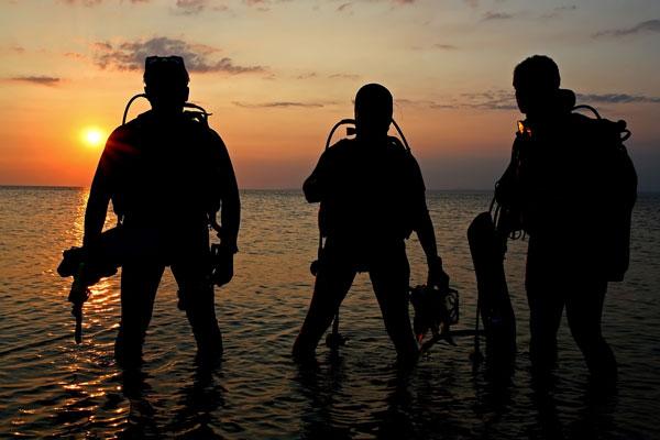 padi night dive island.jpeg