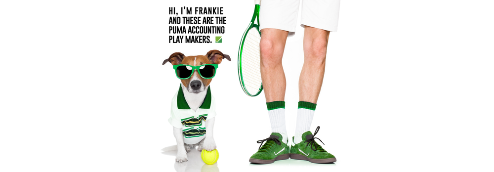 Puma_Accounting_Professional_Accountant_IRS_Tax_Debt_Relief_Team.png
