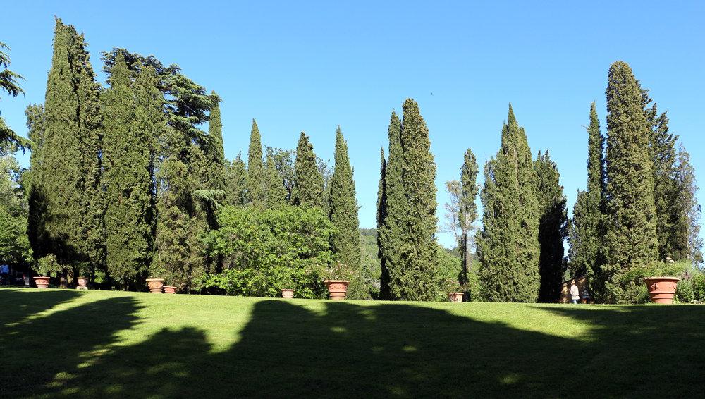 Villa_di_bivigliano,_parco_02.jpg