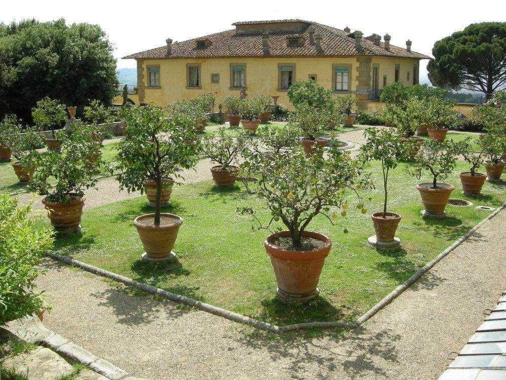Villa_gamberaia,_limonaia_12.JPG