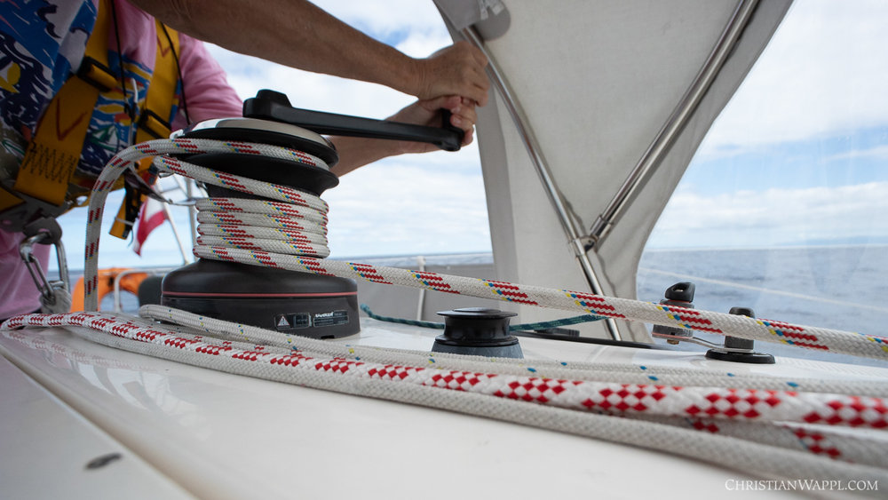Fact: 75% of a sailing yacht's mass is made up of ropes