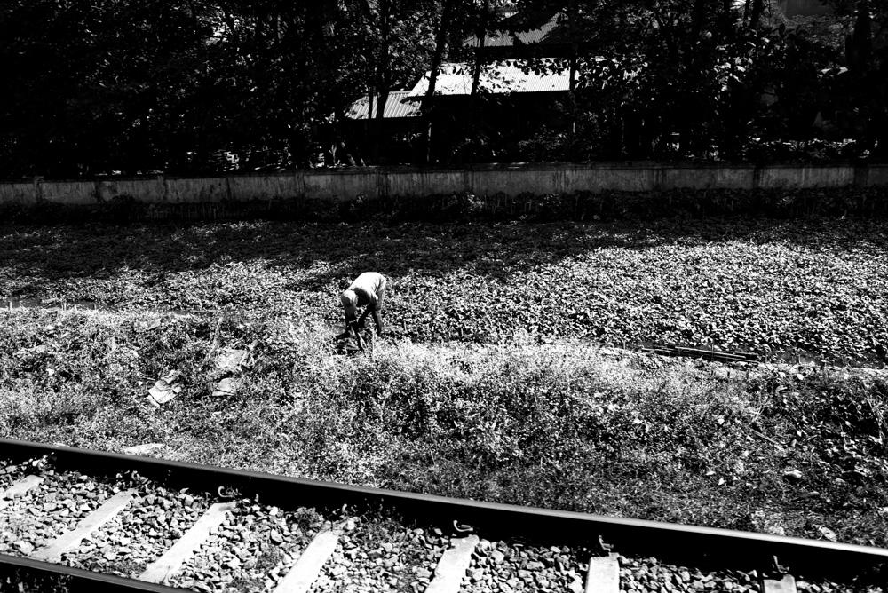 Kasia Kolmas Myanmar Yangon Train-6.jpg