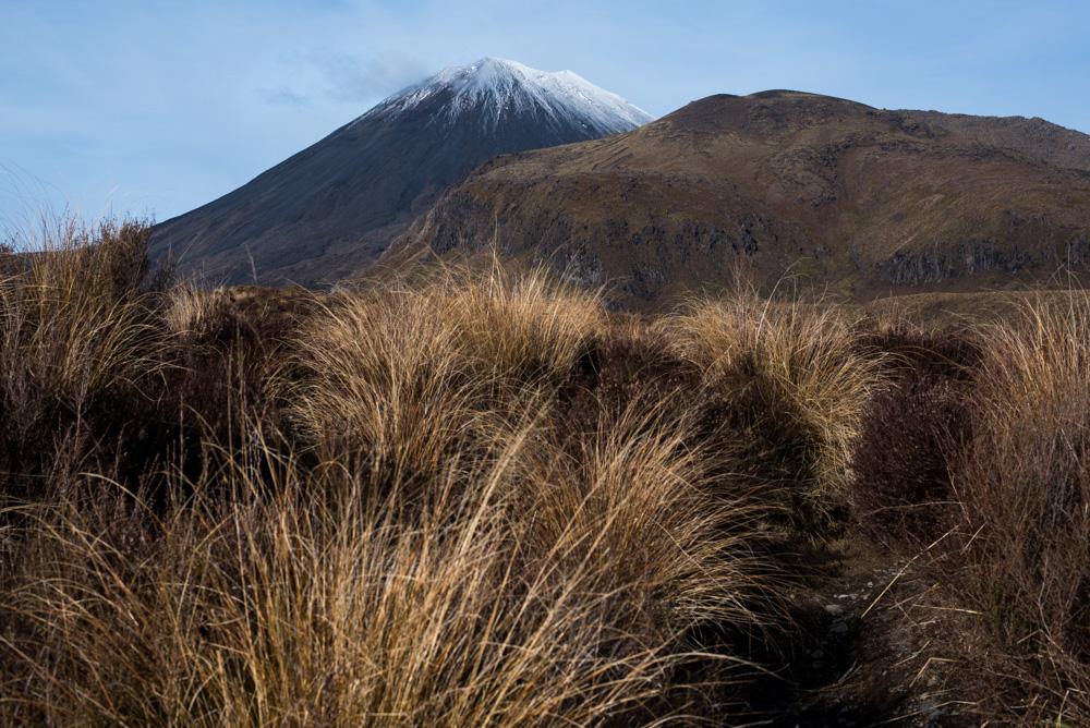Kasia Kolmas New Zealand Winter-24.jpg