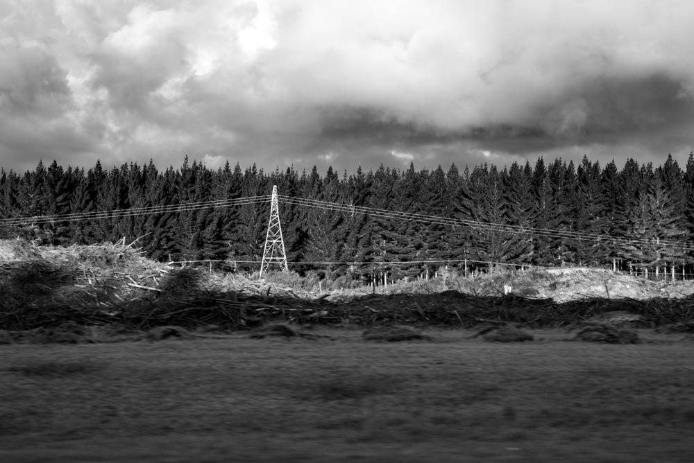 Kasia Kolmas New Zealand Winter-2.jpg