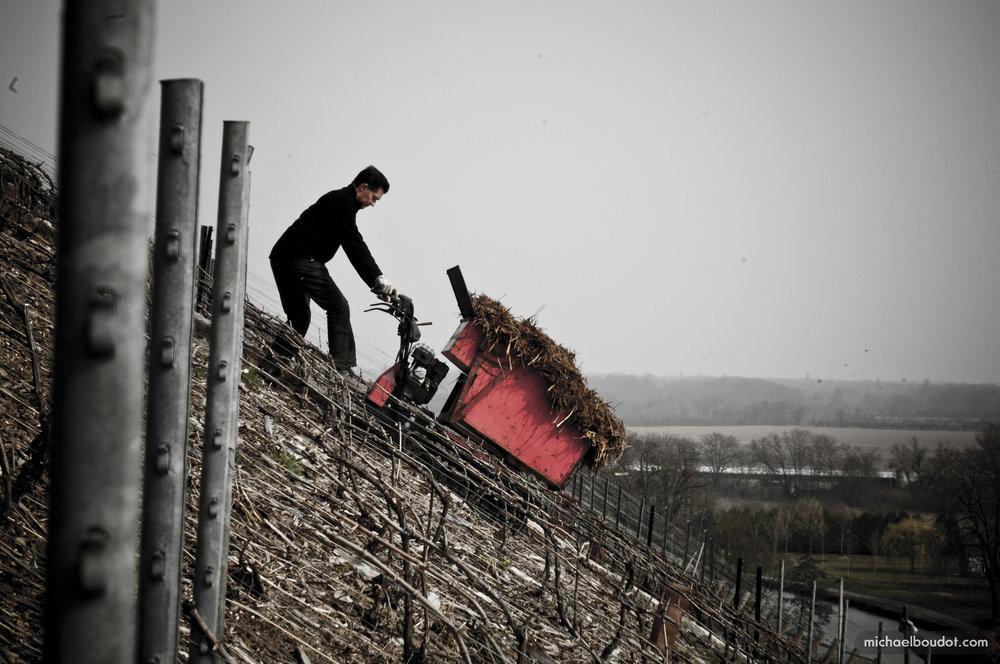 Philipponnat steep vineyards .jpg