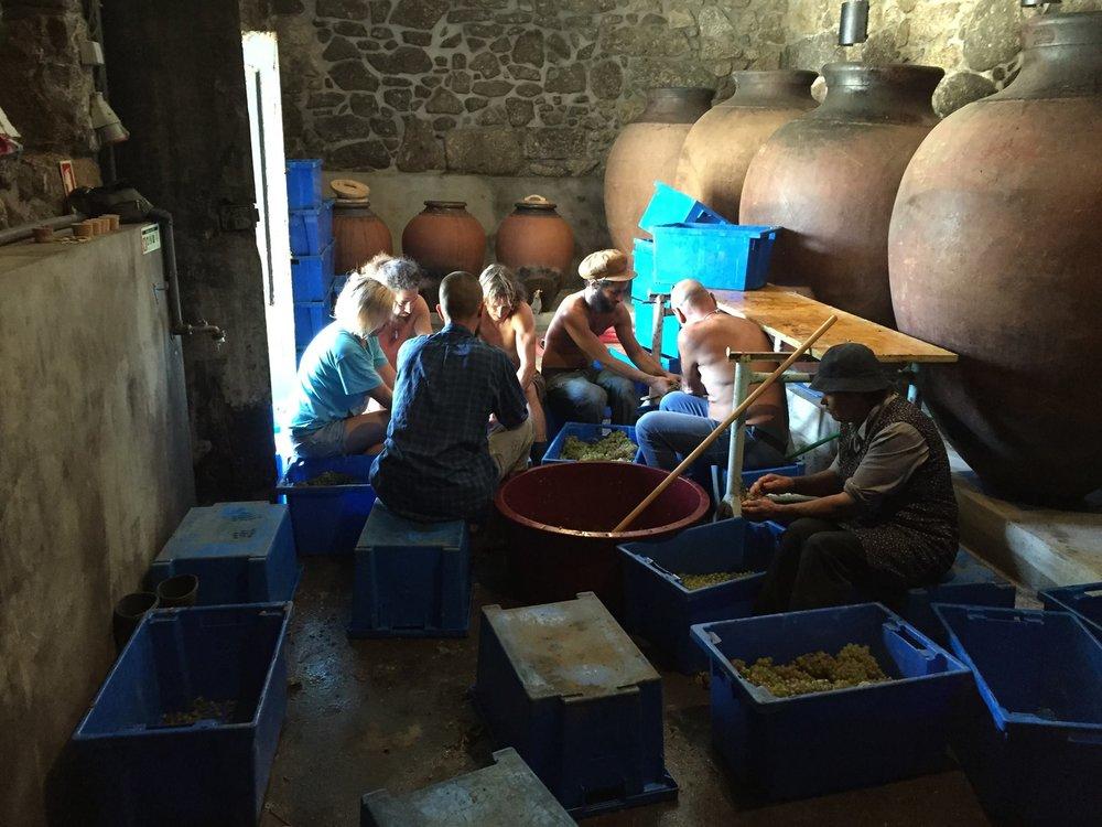 Aphros Wine