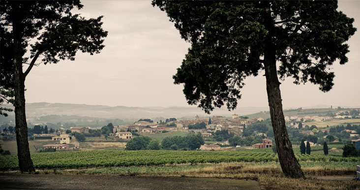 Domaine La Louviére