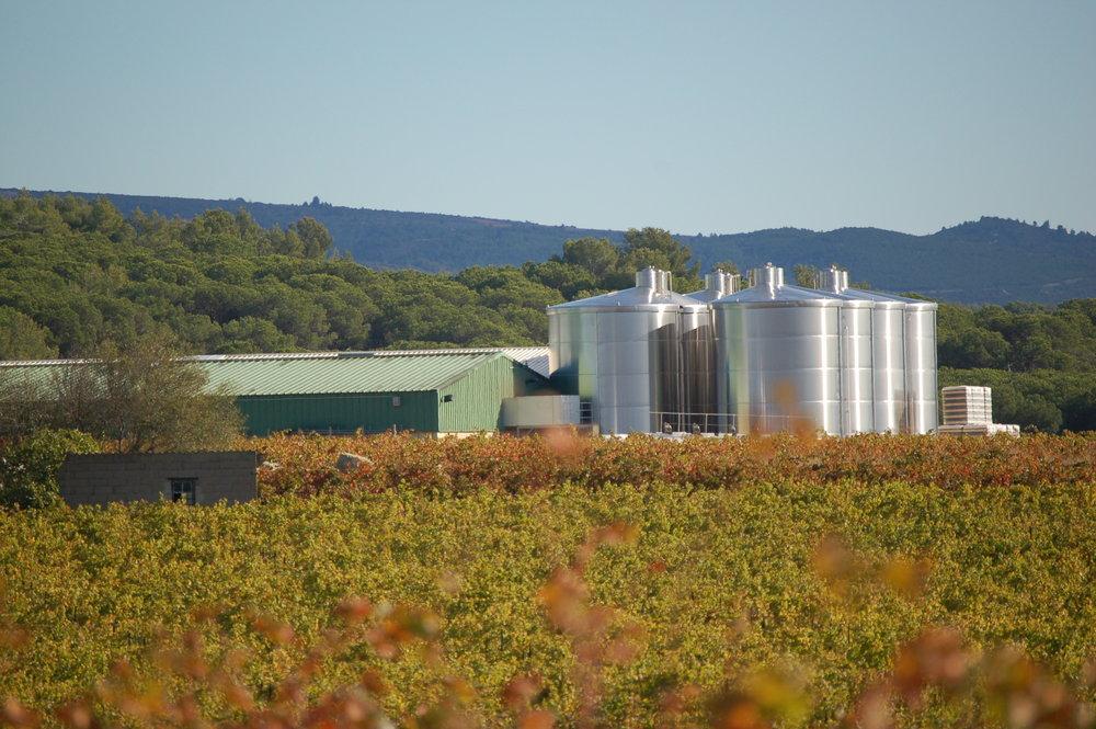 Les Celliers Jean d'Alibert winery_Pierrick Harang Wine_4.JPG
