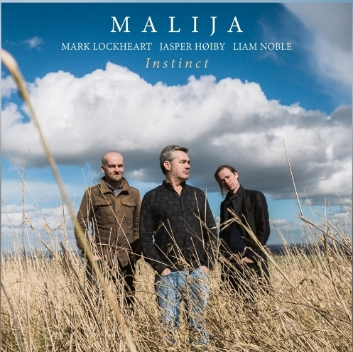 """""""The real substance of Malija's music often lies just below the surface. """"Instinct"""" is an album whose secrets and subtleties become more and more apparent on subsequent listenings"""" The Jazzmann"""