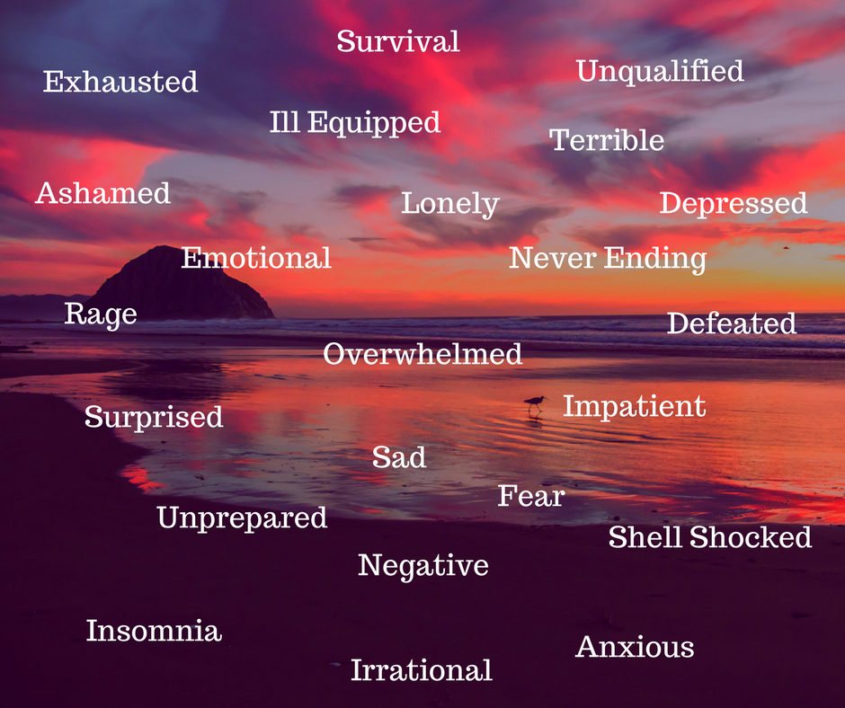 When I asked moms to describe how they felt about their postpartum experience, the words above are what they used to describe it.  Not exactly the fairytale picture that everyone paints motherhood to be but it is reality for a lot of women.