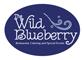 Wild-Blueberry-small.jpg