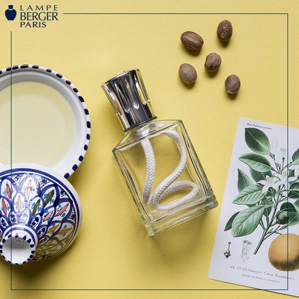 1-Lampe-Berger-Bastoncini-oli-profumati-essenze-fragranze-per-ambiente-Collezioni-Le-Fragranze-A-la-Page-Roma.png