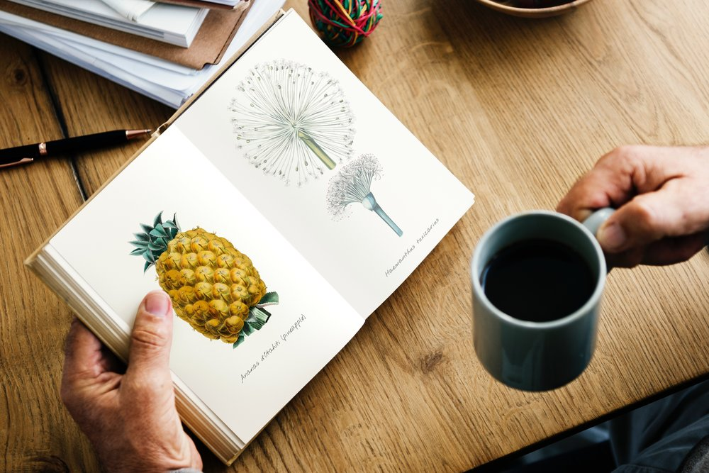 book-coffee-cup-891677.jpg