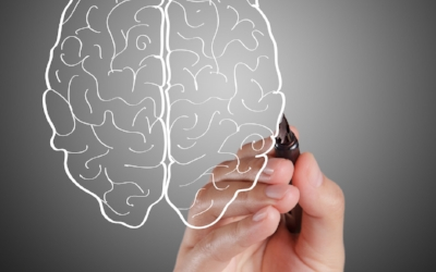 segredo-cerebro-inteligente-vitaminas-Escola-Eduardo-Cirilo-Método-DeRose-Porto-viveremaltaperformance-11.jpg