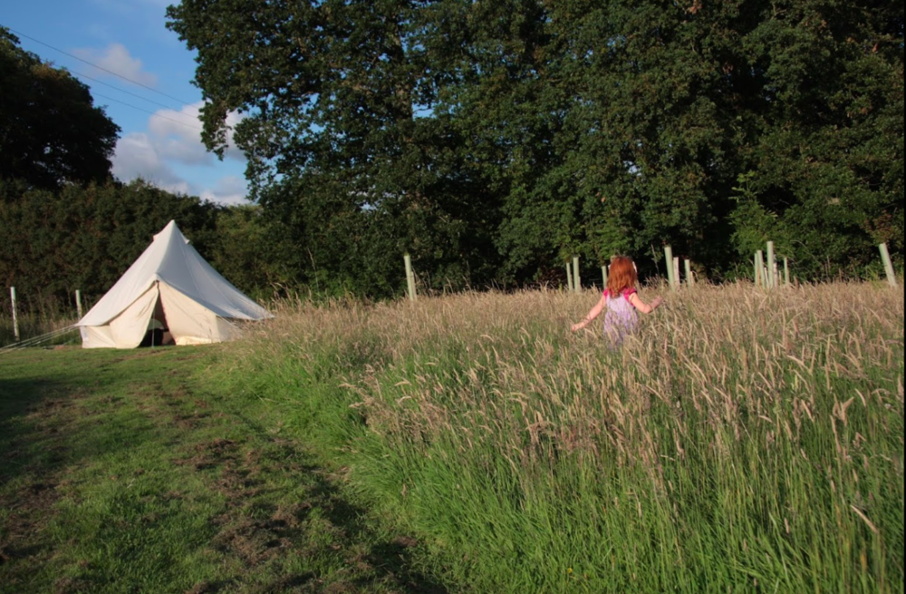 The Secret Campsite Lewes - The beautiful camping facilities of The Secret Campsite are within walking distance of our Lewes site. Visit their website to find out more & book