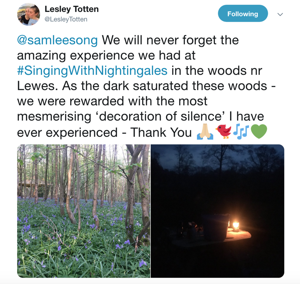 Lesley Totten feedback.png