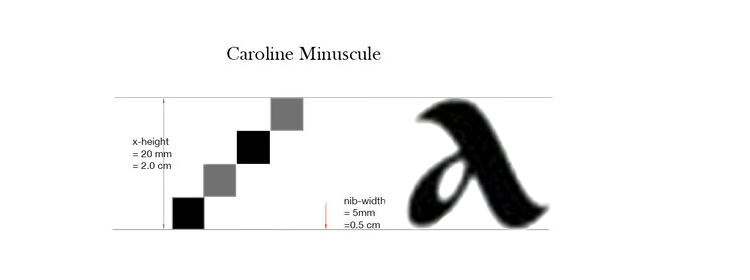 X-height of a Caroline Minuscule is typically 4 nib-width tall. In theory: To achieve 2.0cm (20mm) x-height, the width of the broad edge nib used needs to be 0.5cm (5mm).
