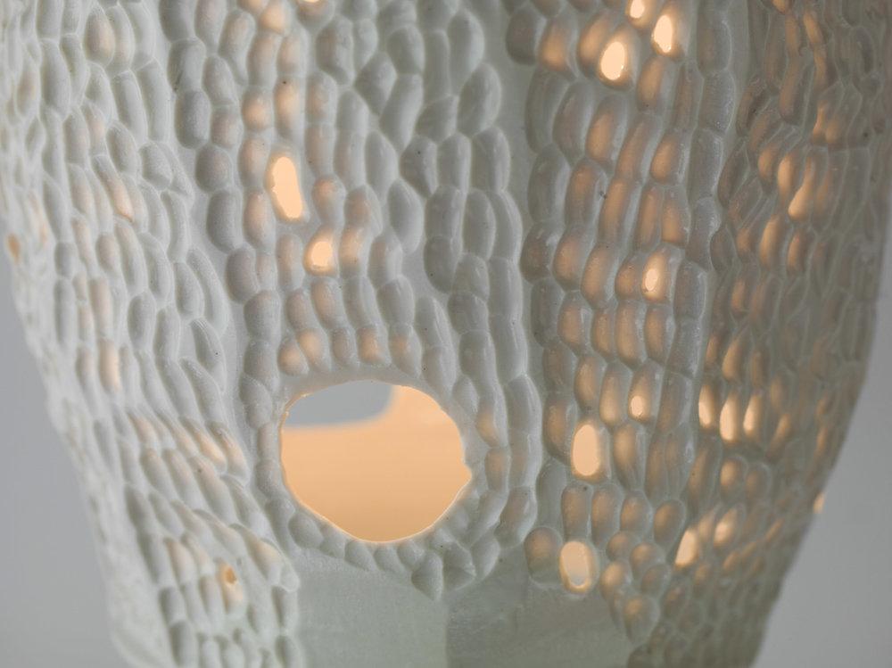 LAMPS_111616-029.jpg