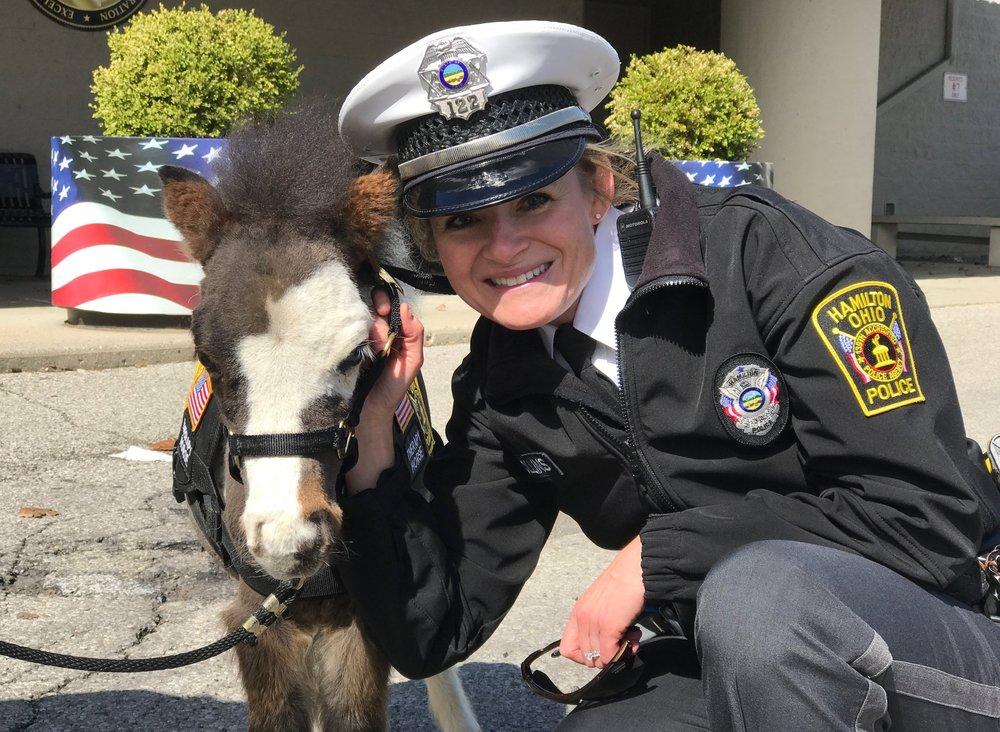 Officer Collins with therapy horse, Toby
