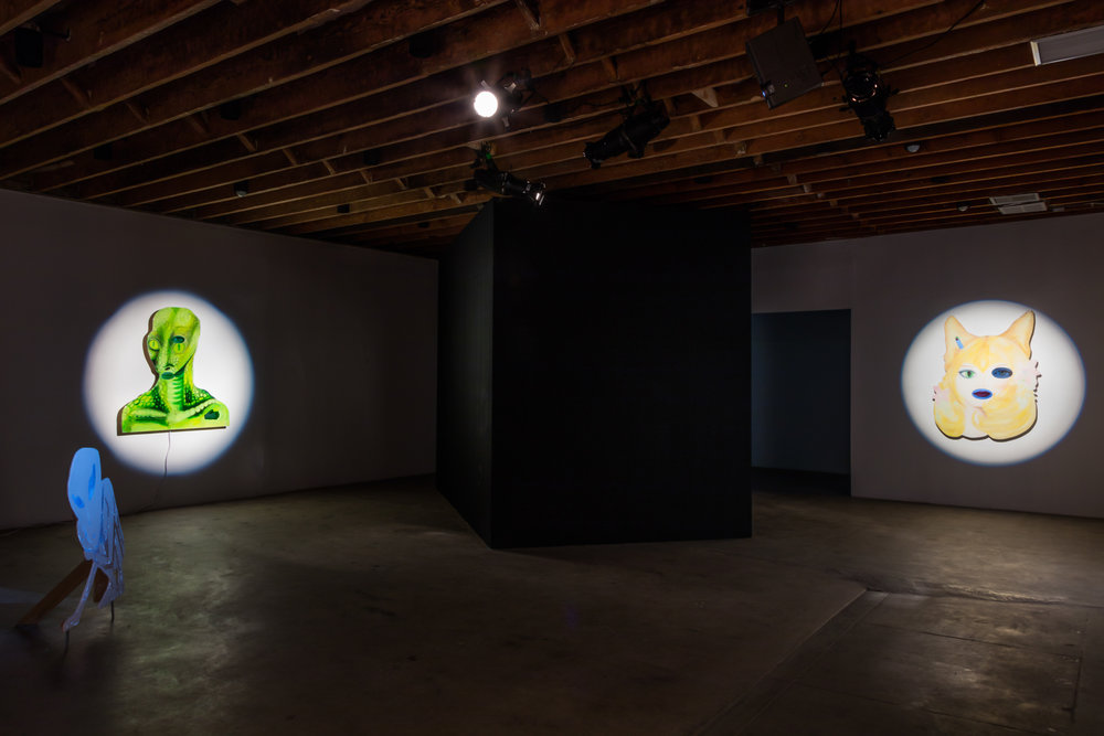Unidentified, Installation view