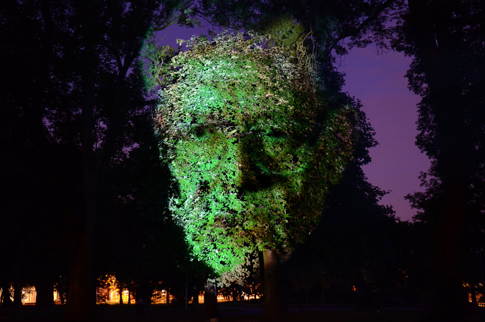 tree face man 2.jpg