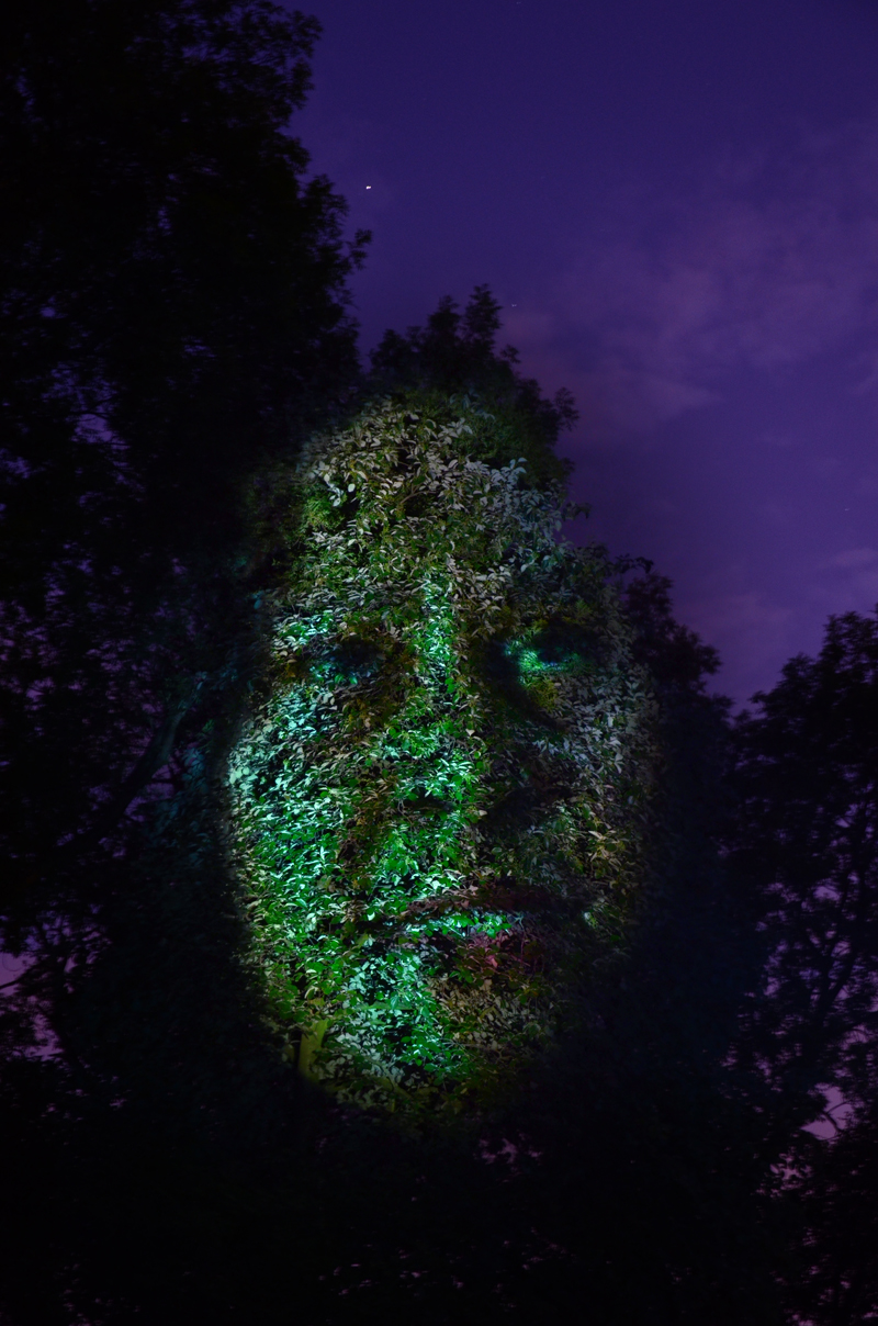 tree face woman sky.jpg