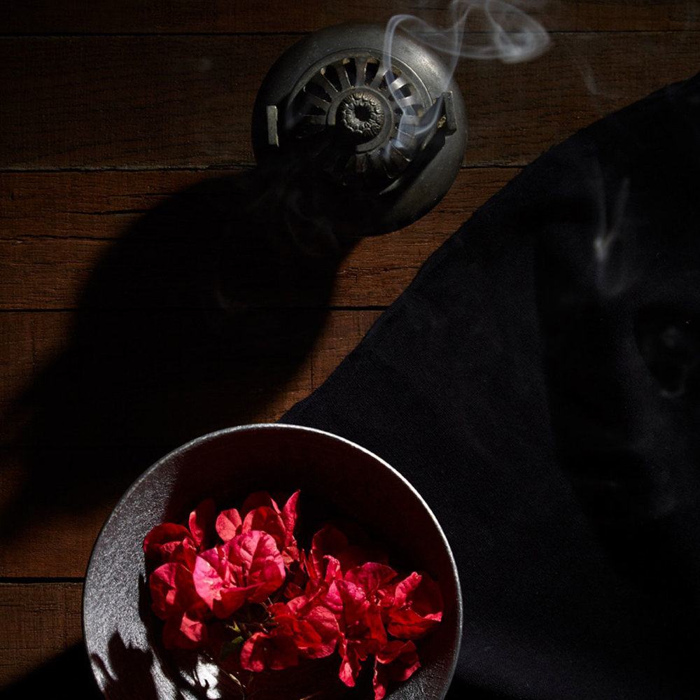 Jane Hartmann  Tabletop / Still Life