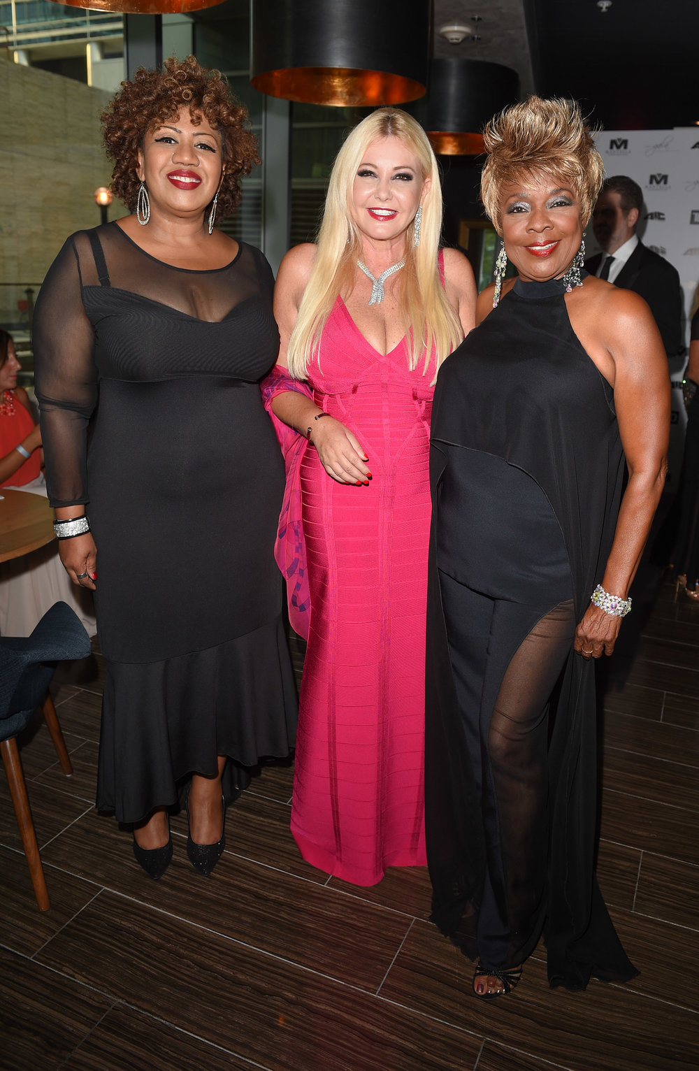 2016 Toronto International Film Festival - AMBI Gala