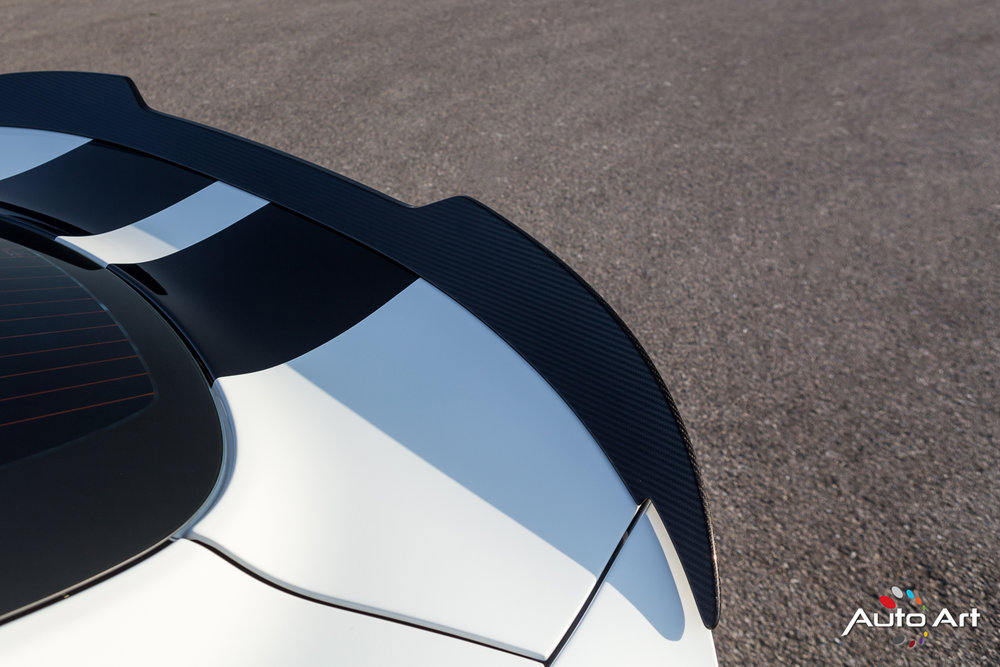 viper-carbon-fiber-wing.JPG