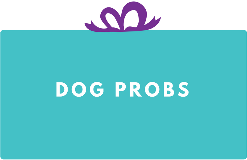 Surprise Gift Co. Blog : Dog Probs