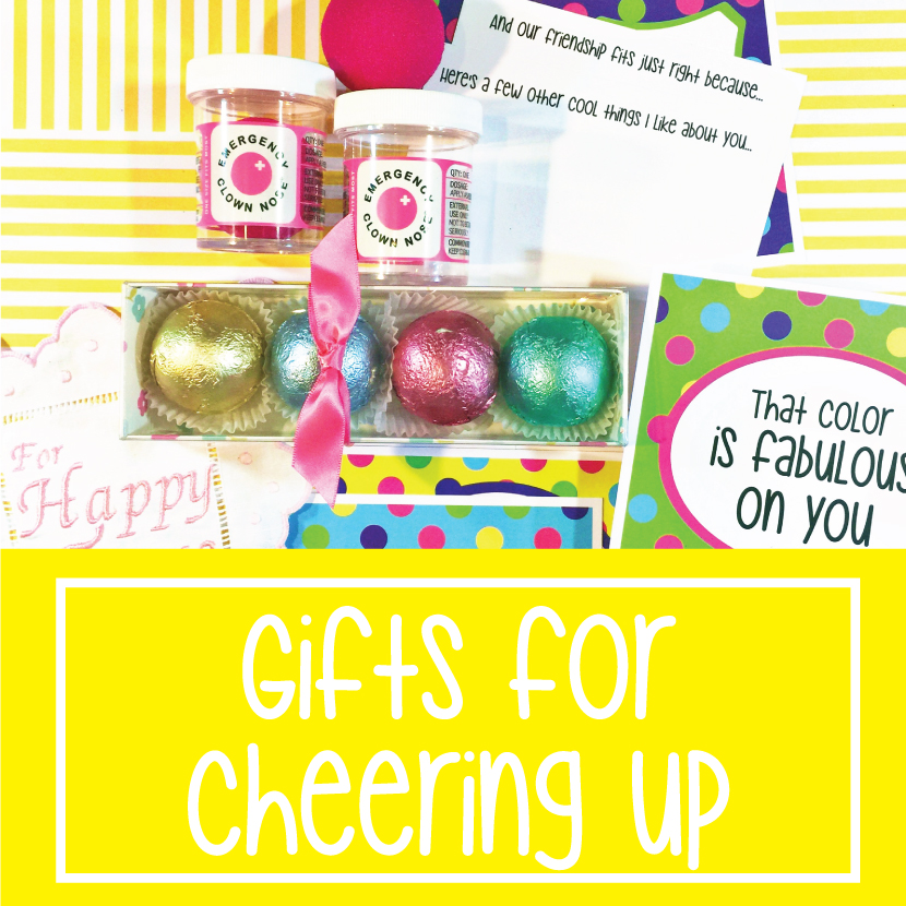 Surprise Gift Co : Gifts for Cheering Up
