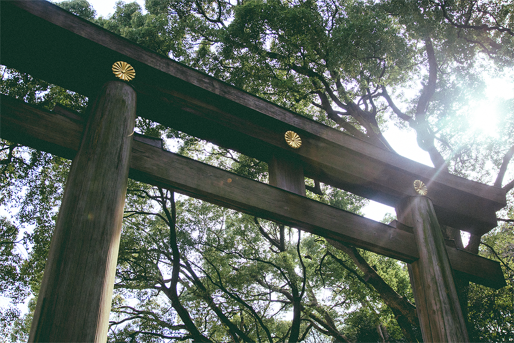 Shrines are such a calming experience, which such a juxtaposition to the wild streets of Harajuku.