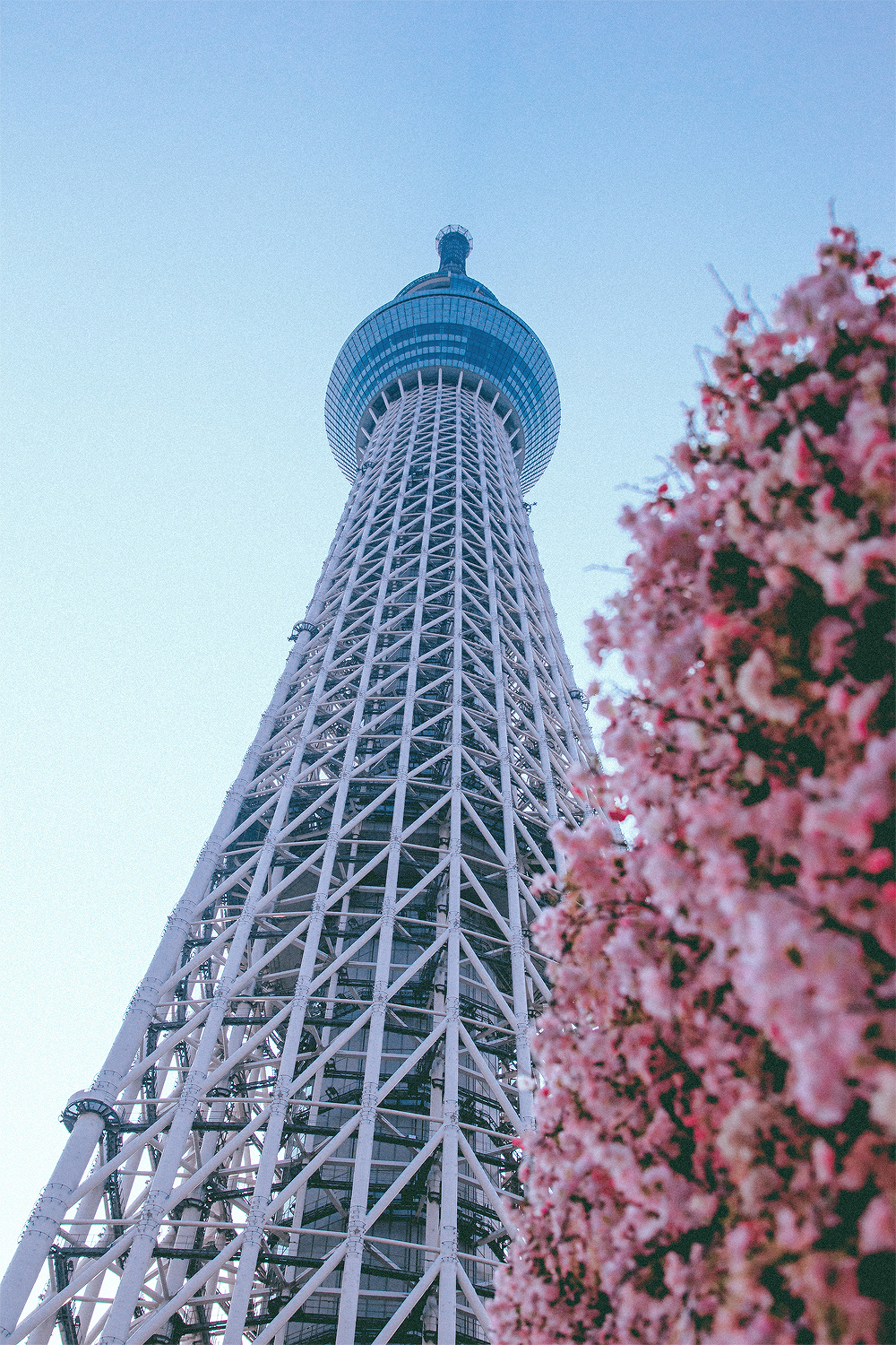 It was finally time to visit the actual SkyTree, which was a little overwhelming.