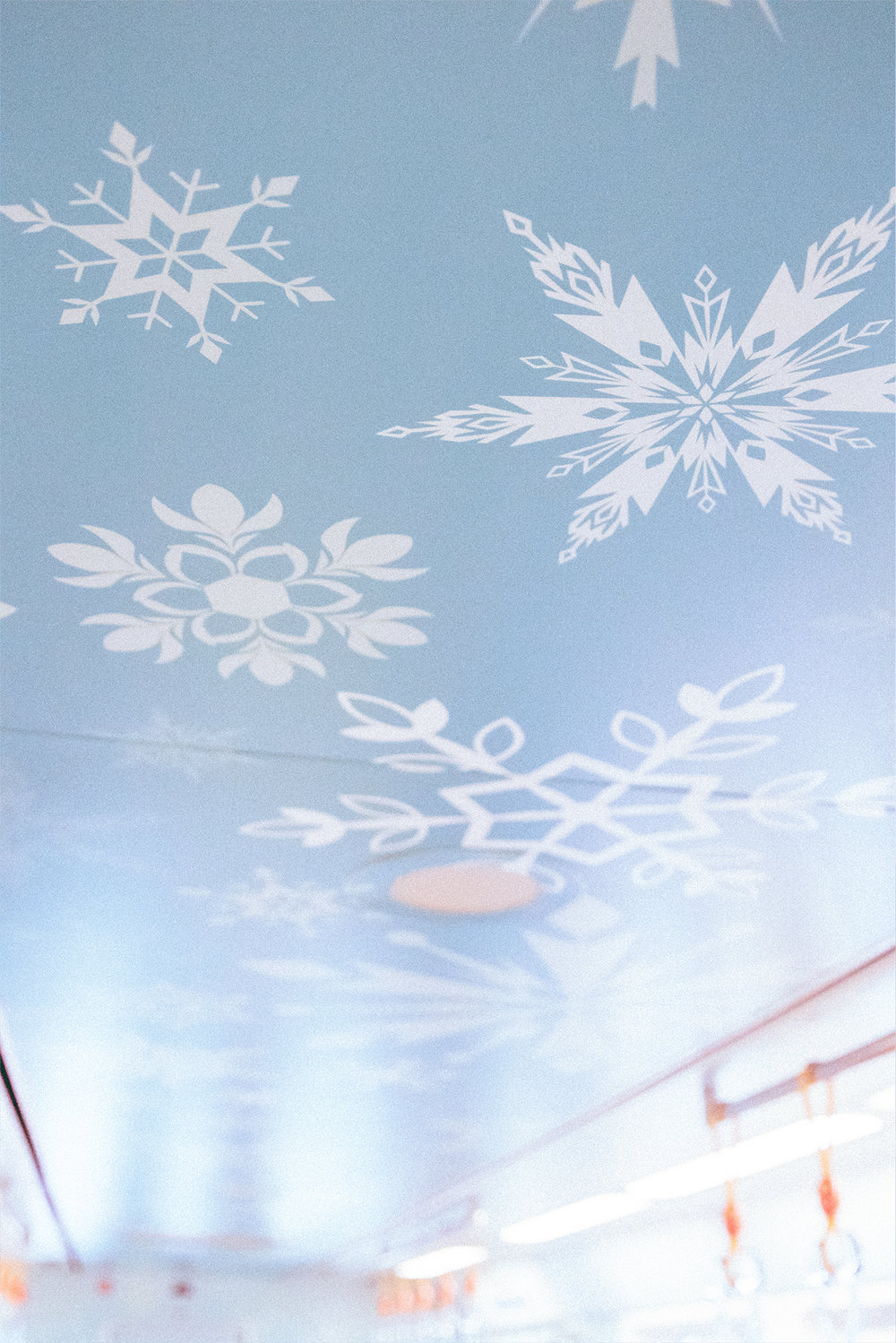 Every inch of this monorail is covered in Frozen fractals.