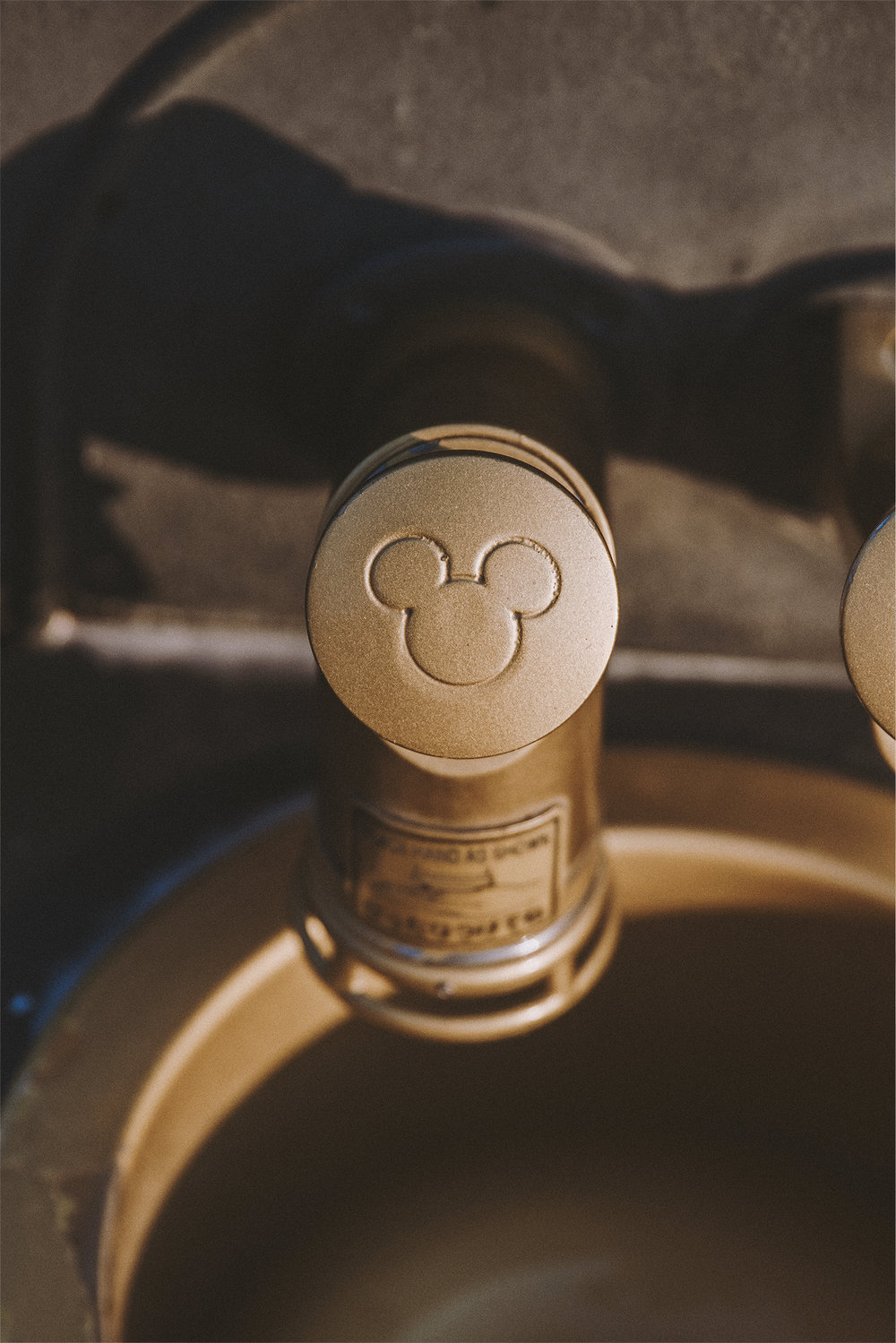 In 2016, we attempted using the Mickey Mouse shaped soap dispenser and failed. Of course, we did this at night and had no idea what we were doing. This time around we figured it out.