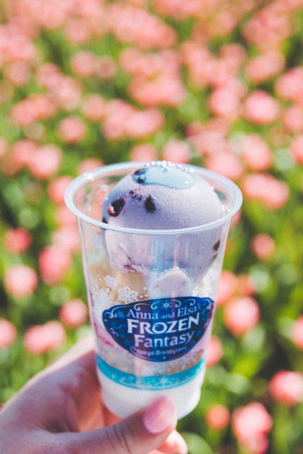 Frozen Fantasy Blueberry Cheesecake Sundae from Ice Cream Cone  (¥500) This sundae is a specialty event item and won't be available any longer, but the Ice Cream Cone has some delicious flavors. That blueberry ice cream was refreshing!