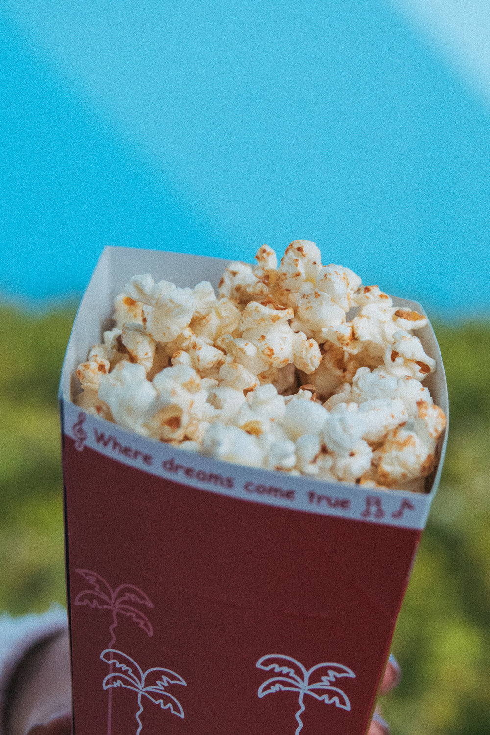 Soy Sauce & Butter Popcorn found next to Treasure Comet (¥310) Arguably the best flavor of popcorn found at TDR. I've tried to recreate this one at home and I've failed miserably. Till then I'll be dreaming of this out-of-this-world snack.