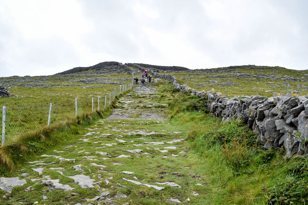 "Inis Mór is full of tiny rocky paths like this one that cut across acres of farmland. If you're (un)lucky, you might come across a particularly vocal cow who seems to be saying ""get off my lawn!"""
