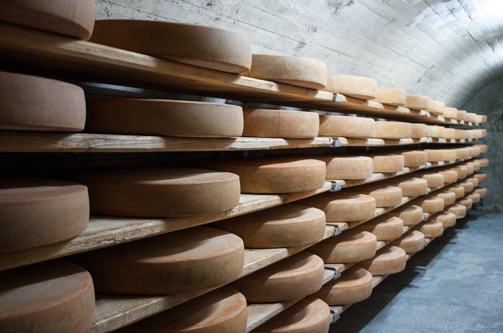 1. Cheese -