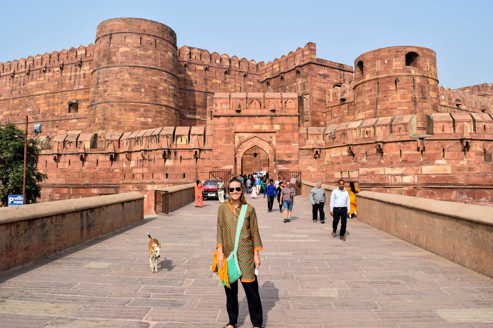 Me, being very chill in front of this stray dog at the Agra Fort.