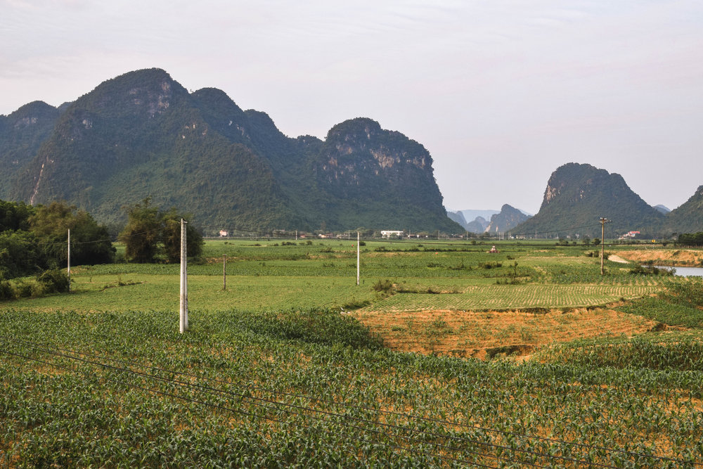 We didn't take any pics of our miserable day in Ha Tinh so here's a Phong Nha preview!