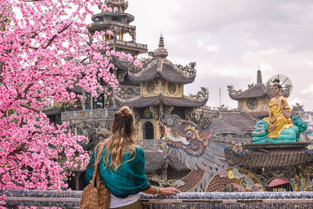 Cherry blossoms in bloom at the Linh Phuoc Pagoda in Da Lat.