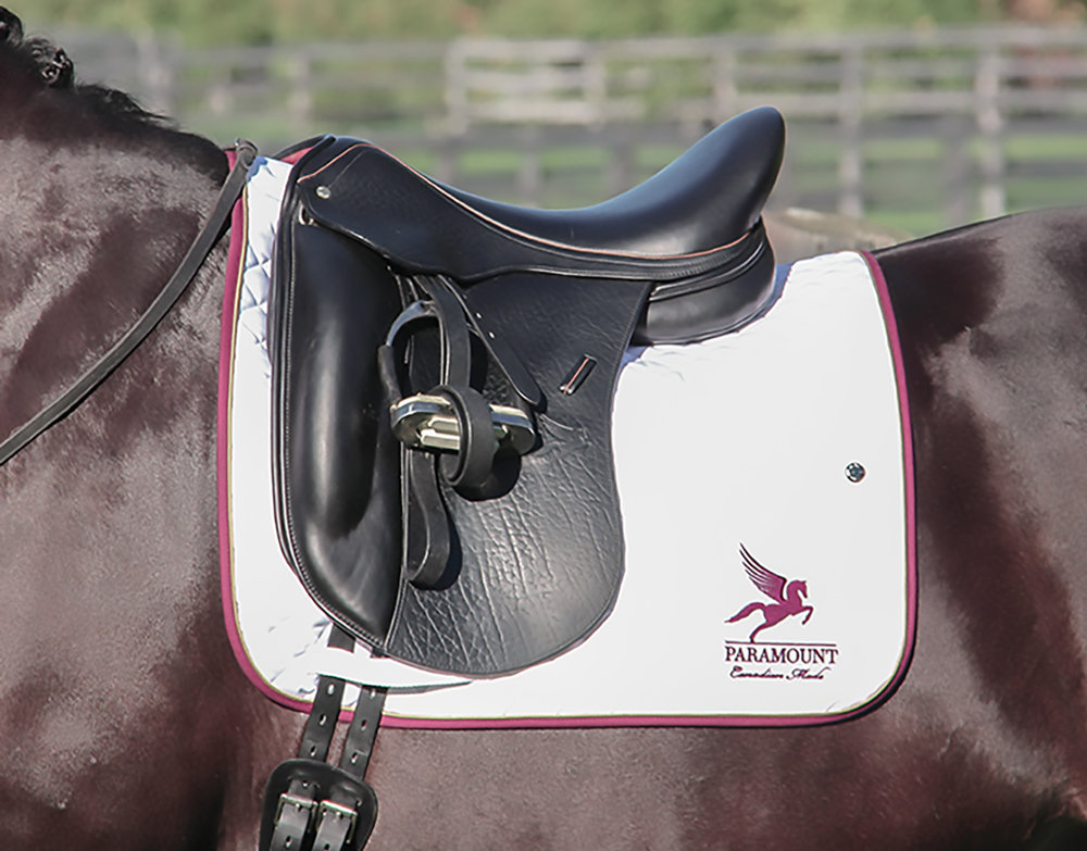 "Paramount Performance K Mono-flap Dressage Saddle + tan accents (""Welly"" - ""Well Done"" - Braeburn Farms)"